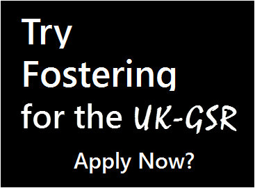 fostering for the uk-gsr