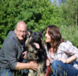 foster home with german shepherd dog